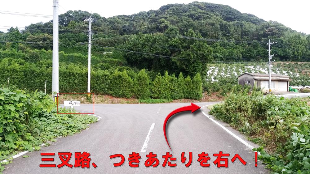 つきあたりを右折してください。三叉路より約300mで到着します。